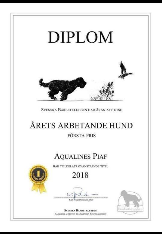 galleri_diplom Piaf 2018